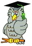 Wise Owl Enterprises Logo